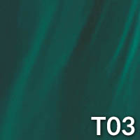 Swim spa - T03 - stripped dark green texture